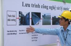 Triển khai thanh tra toàn diện nhà máy giấy Trung Quốc
