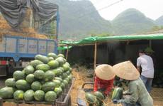 Tại sao thương nhân Trung Quốc thích đi đường tiểu ngạch?