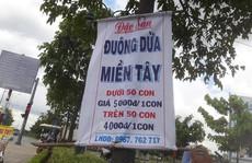 Đuông dừa miền Tây 5.000 đồng/con ở lề đường Sài Gòn