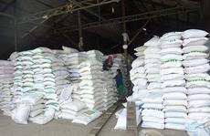 Xuất khẩu gạo sẽ còn gặp khó