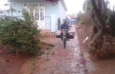 Lâm Đồng có 'mưa vàng'