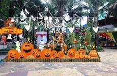 Nhiều hoạt động Halloween