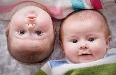 Hi hữu 2 bé gái sinh đôi nhưng khác cha