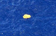 Tìm thấy mảnh vỡ máy bay Ai Cập?
