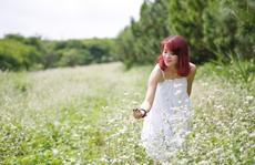 Lên Lâm Đồng ngắm hoa tam giác mạch