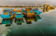 Lặng người trước vẻ đẹp sông Trà Bồng