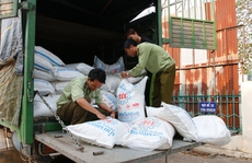 Liên tiếp bắt giữ hàng lậu ở Đắk Lắk