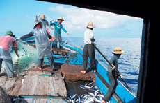 Phản đối Trung Quốc cấm đánh bắt cá phi lý trên Biển Đông