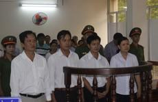 Bộ sậu Ban Quản lý dự án huyện Hòa Thành lãnh án