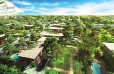 Mua đất biệt thự được tặng vườn rau hữu cơ