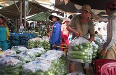 11 vườn rau bị rút chứng nhận VietGap