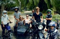Brad Pitt 'né' công chiếu phim vì 'hoàn cảnh gia đình'