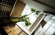 Ngôi nhà nhiều nắng gió của một giảng viên đại học