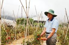 Thủy điện xả lũ, nhà vườn ở Lâm Đồng chới với