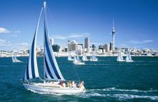 Auckland - bạc trắng những cánh buồm