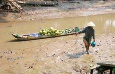 Bộ Y tế chỉ dẫn 'hô biến' nước ao hồ, sông suối thành nước sạch