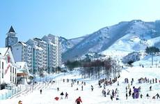 Khám phá mùa đông Hàn Quốc