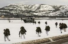 Mỹ triển khai hàng trăm binh sĩ tới láng giềng của Nga