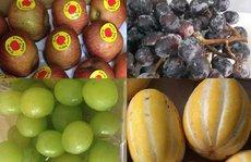 Ăn trái cây ngoại nhập: Tranh mua táo héo, nho rụng, dưa sứt vỏ
