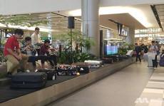 Nhà ga 'độc' ở sân bay Singapore