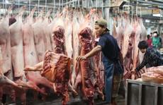 TP HCM quyết chặn thịt heo không rõ nguồn gốc