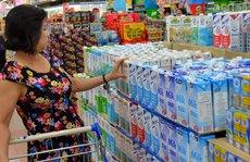 TP HCM: Đàn bò sữa và sản lượng sữa tươi giảm