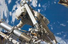 Phát hiện vi khuẩn 'đến từ ngoài không gian'