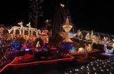 Chi gần 5 tỷ đồng thắp sáng 530.000 đèn Giáng sinh