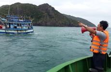Côn Đảo, Cần Giờ: Nghỉ học, ngừng chợ, di dân chống bão số 16