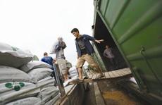 Mỹ, Trung Quốc tăng cường xuất hàng qua Việt Nam