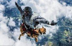 Choáng với cảnh nhảy dù từ máy bay của chó không quân Colombia