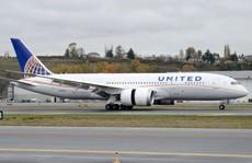 Hãng United Airlines bị kiện vì làm chết thỏ khổng lồ