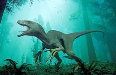 Xác khủng long trong trạm điện bỏ hoang