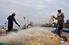 'Cấm biển': Ngư dân bất chấp