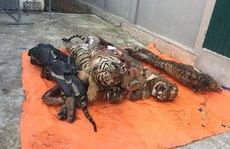 Nghệ An - điểm nóng buôn bán hổ