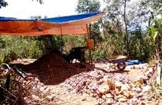 Sau bài viết 'Thâm nhập địa đạo vàng tặc': UBND tỉnh Gia Lai vào cuộc