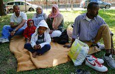 Năm ác nghiệt với người di cư