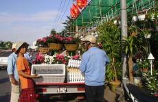 Giá hoa kiểng tăng nhẹ