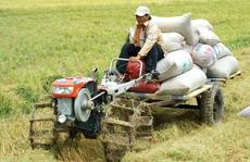 Muốn làm giàu phải tích tụ ruộng đất