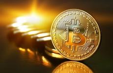 """Dân""""cày"""" bitcoin tiết lộ sốc"""