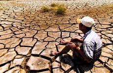 ĐBSCL 'đói' vốn ứng phó biến đổi khí hậu