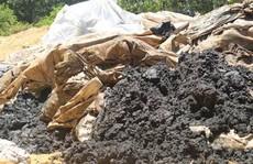 Phạt Formosa 560 triệu đồng vì chôn chất thải trái phép