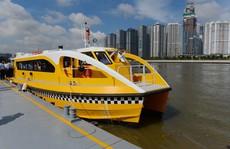 Đề xuất cho 10 xe điện kết nối buýt đường sông mỗi ngày