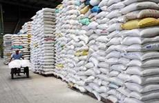 Vụ giấy phép xuất khẩu gạo 20.000 USD là bịa đặt?