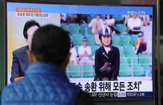 Hàn Quốc: Chủ nhân ngựa triệu đô bị bắt