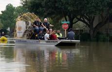 Bão Harvey làm hại môi trường Texas