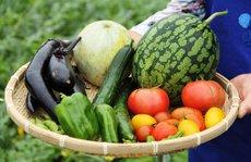 Quảng cáo thực phẩm organic: Vì sao ai cũng 'nổ'?