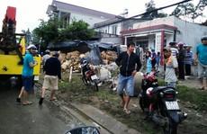 Lâm Đồng: Xe tải chở hoa mất lái, lao vào nhà dân