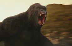 'Kong: Đảo đầu lâu' vất vả thu hồi vốn