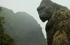 Mãn nhãn với phong cảnh Việt Nam trên 'Kong: Đảo đầu lâu'